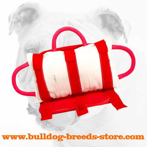 Bulldog Bite Pillow with Three Handles