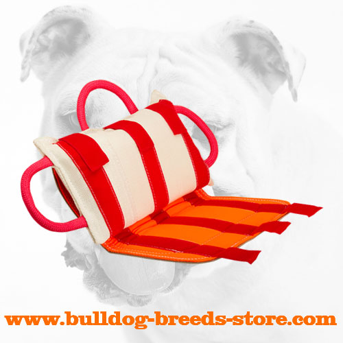Leather Covered Bulldog Bite Pillow for Training