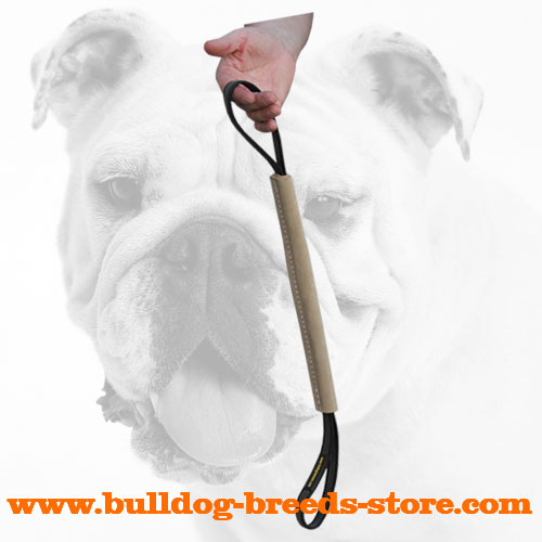 Leather Bite Tug for Retrieve Bulldog Training