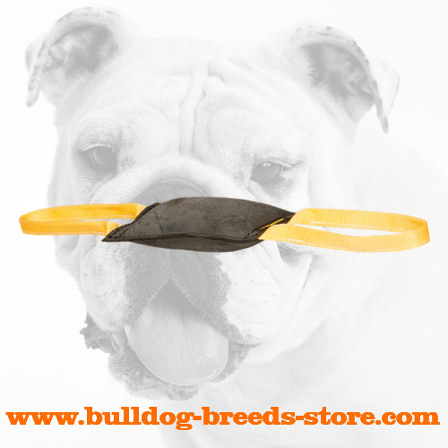 Properly Stuffed Leather Dog Bite Tug for Bulldog