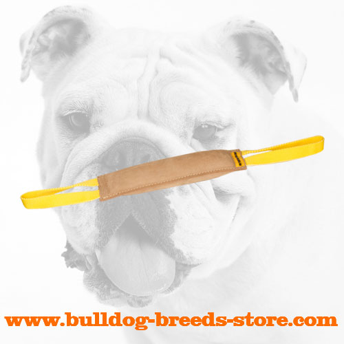 Tear Resistant Leather Dog Bite Tug for Bulldog