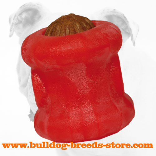 Rolling Everlasting Bulldog Chew Ball