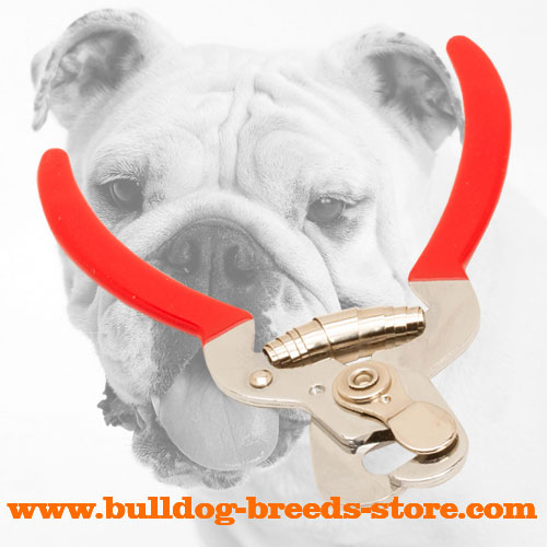 Comfortable Dog Nail Trimmer for Bulldog