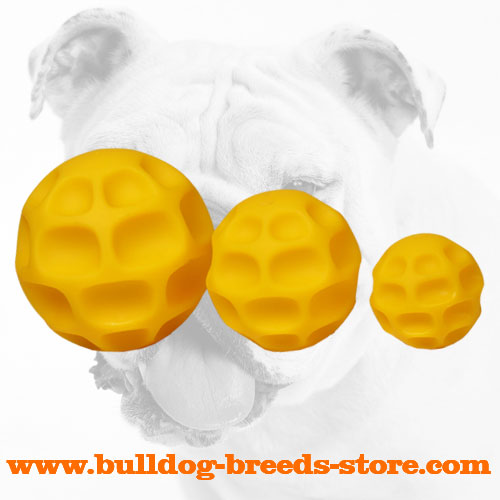 Tetraflex Bulldog Ball for Longer Food Consumption