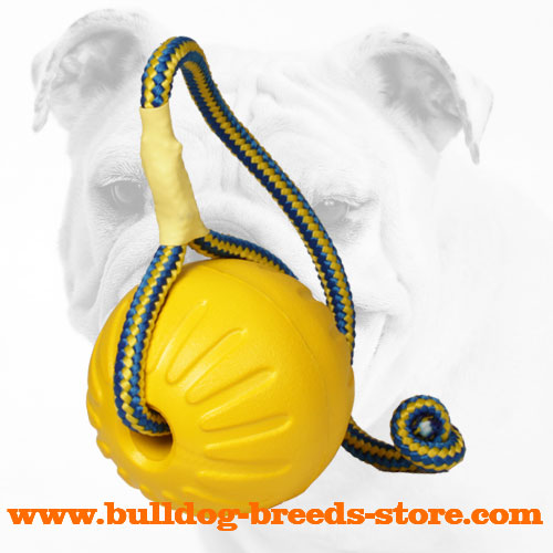 Colorful Training Bulldog Foam Ball