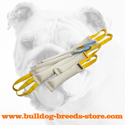 Doubled Fire Hose Bulldog Bite Tugs