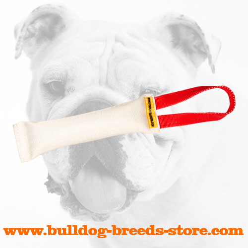 Fire Hose Bulldog Bite Tug for Puppies