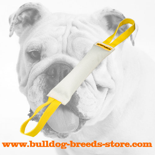 Strong Training Fire Hose Bulldog Bite Tug