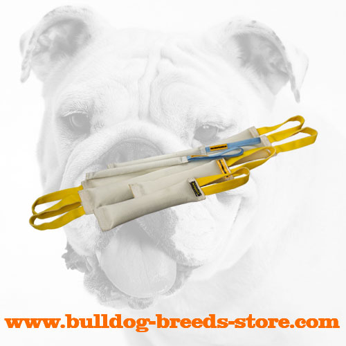 Convenient Fire Hose Bulldog Bite Tugs