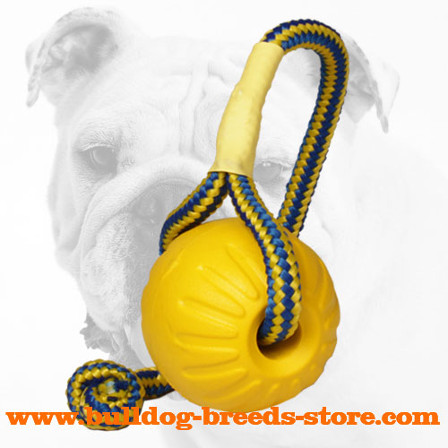 Lightweight Unsinkable Foam Bulldog Ball