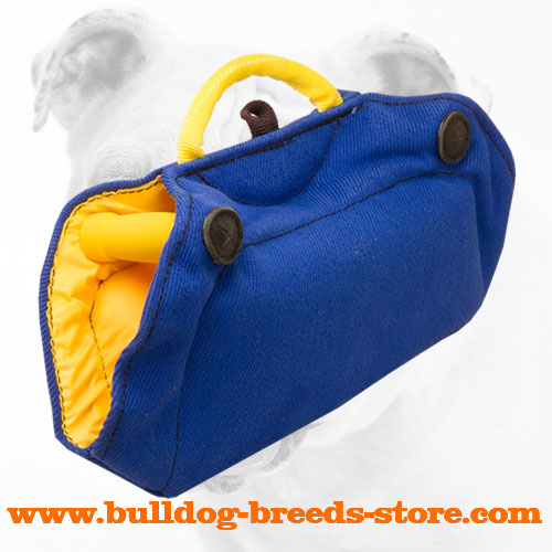Super Durable Training French Linen Bulldog Bite Builder