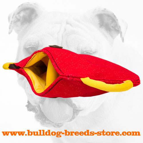 High Quality French Linen Bulldog Bite Builder