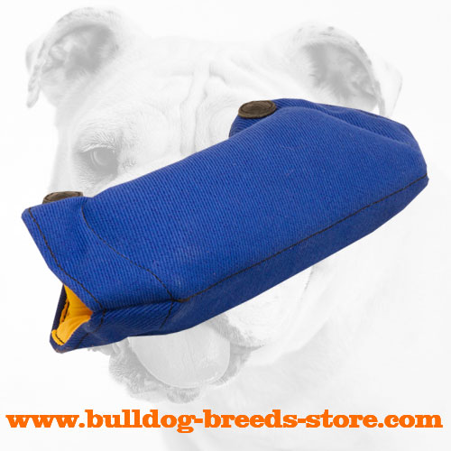 Top Quality French Linen Bulldog Bite Builder