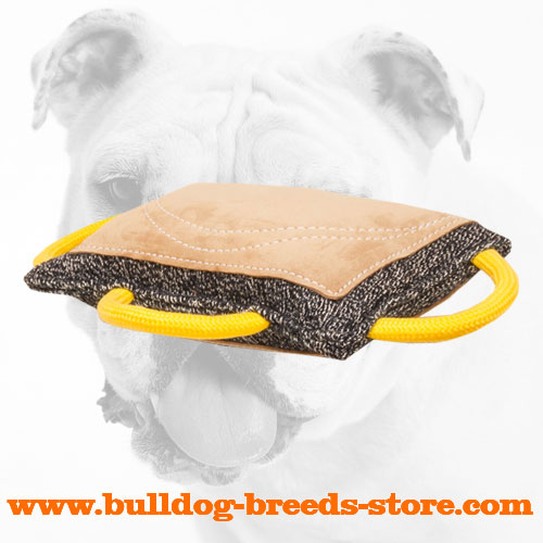 French Linen Bulldog Bite Pad for Bite Work