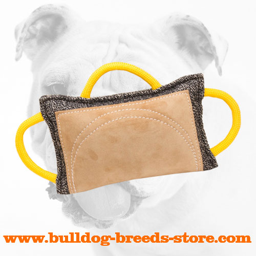 Advanced French Linen Bulldog Bite Pad for Training