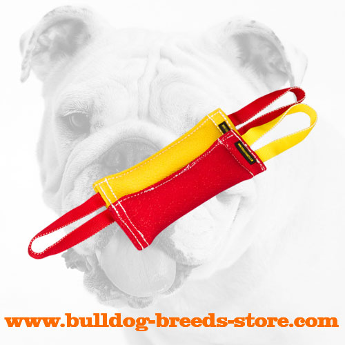 Training Handy French Linen Bulldog Bite Tugs
