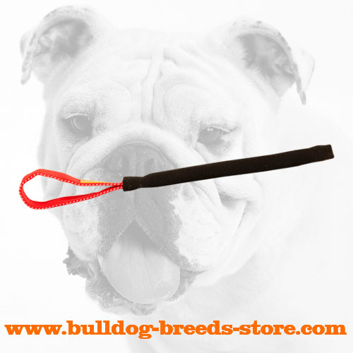 Strong French Linen Bulldog Bite Tug for Training