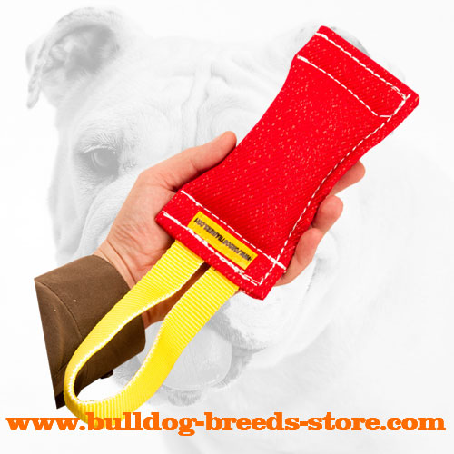 Sturdy French Linen Bulldog Bite Tug for Retrieve Work