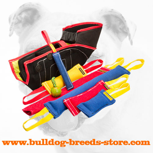 Tear-Resistant French Linen Bulldog Tugs for Training