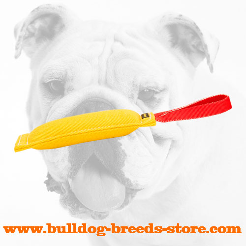 Retrieve French Linen Bulldog Bite Tug with Handle