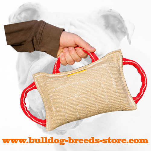 Jute Bulldog Bite Pillow with Handles
