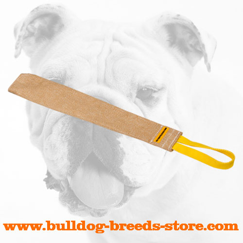 Jute Bulldog Bite Rag for Puppy Training
