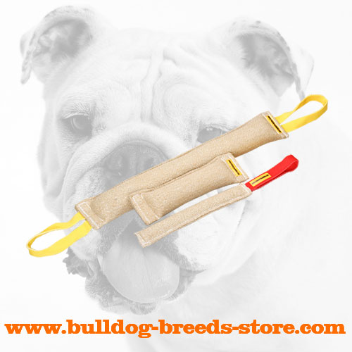 Hand-Stitched Jute Bulldog Bite Set