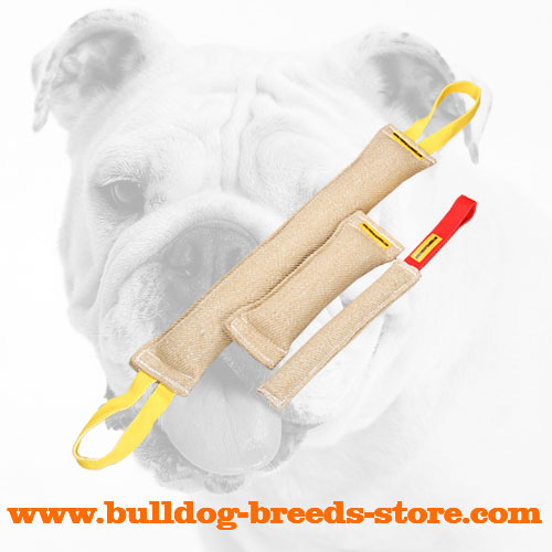Safe Jute Bulldog Bite Tug Set