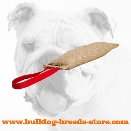 Jute Bulldog Bite Tug for Bite Training