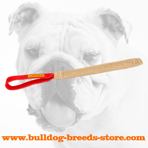 Pocket Jute Bulldog Bite Tug with Handle