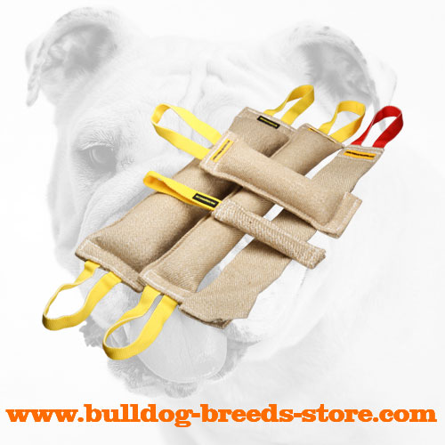 High Quality Jute Bulldog Bite Tug Set