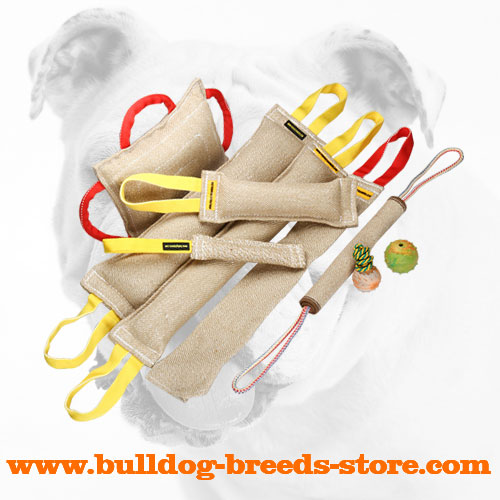 Quality Jute Bulldog Bite Tug Set for Professionals