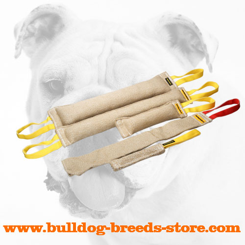 Safe and Hand-Stitched Jute Bulldog Bite Tug Set