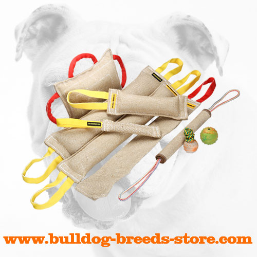 Soft Jute Bulldog Bite Tug Set