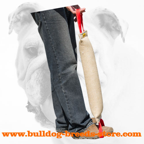 Training Jute Bulldog Bite Tug for Grown Up Dogs