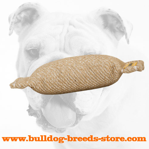 Jute Bulldog Bite Tug without Handles for Puppies
