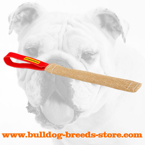 Jute Bulldog Bite Tug for Puppy Training