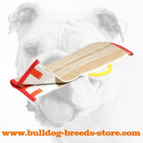 Jute Bulldog Cover