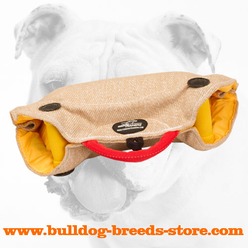 Soft and Safe Jute Bulldog Bite Builder for Puppies