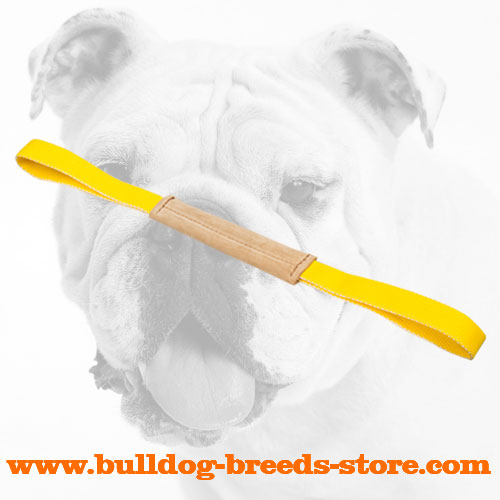Strong Leather Bulldog Bite Tug with Two Comfortable Handles