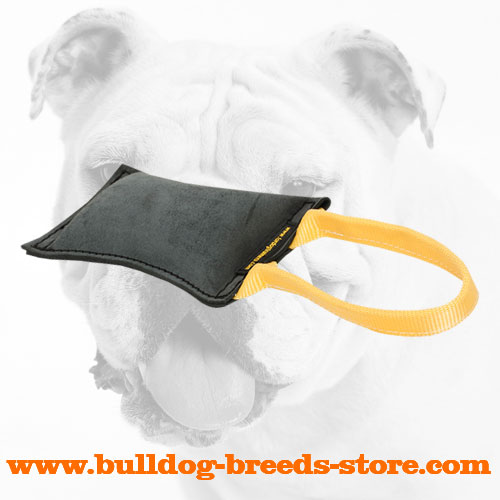 Sturdy Retrieve Leather Bulldog Bite Tug with Handle
