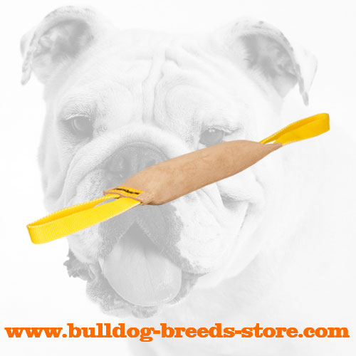 Strong Leather Bulldog Bite Tug with Two Handles