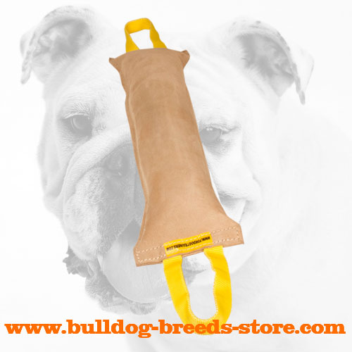 Durable Leather Bulldog Bite Tug with Two Comfy Handles