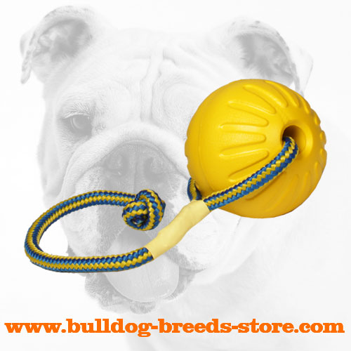 Unsinkable Foam Bulldog Ball