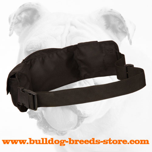 Nylon Bulldog Pouch for Treats
