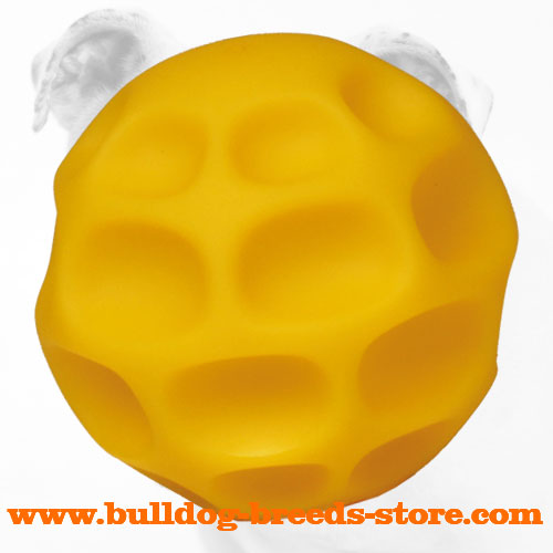 Tetraflex Bulldog Chew Ball for Treat Dispensing