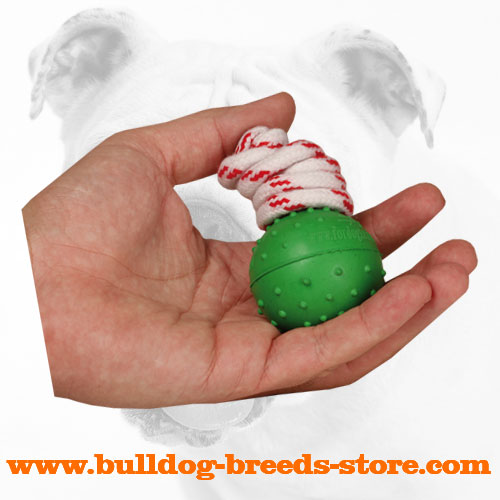 Bulldog Rubber Water Ball
