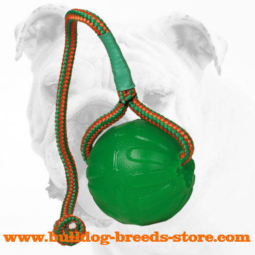 Bulldog Chew Ball for Basic Training
