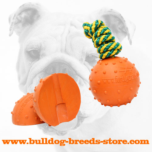 Colorful Bulldog solid Rubber Water Ball