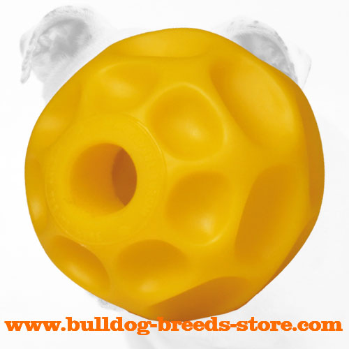 Kibble Dispensing Tetraflex Pet Chew Ball